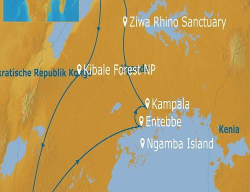 Uganda – Faszination Berggorillas 5.7.2021